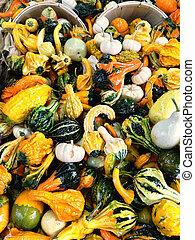 korgar, med, färgrik, dekorativ, kalebasser