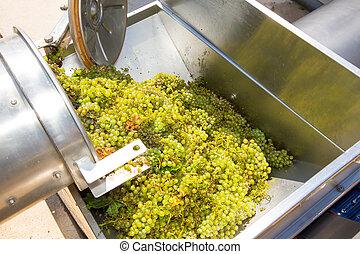 korkenzieher, crusher, destemmer, winemaking, chardonnay
