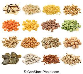 korn, getreide, samen, sammlung