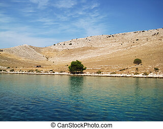 The green isolated pine on a rocky island Kornati on a hot summer day