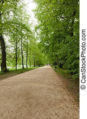 Kornik Arboretum