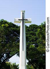 kors, med, grönt träd