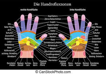 kort, hånd, reflexology, signalement