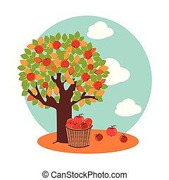 kosár, alma, ősz, fa, vesszőfonás