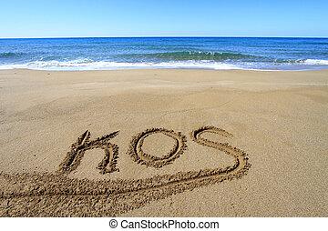 kos, geschreven, op, zandig strand