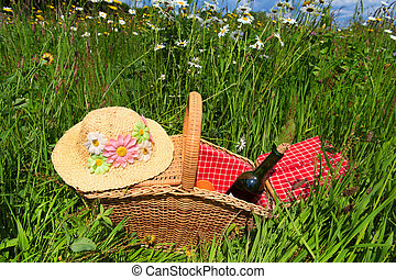 kosz pikniku, w, lato, kwiat, pole
