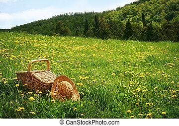 kosz pikniku, w, przedimek określony przed rzeczownikami, trawa