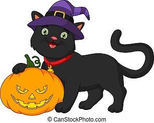 kot, czarnoskóry, dynia