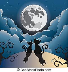 kot, księżyc, pełny, pod