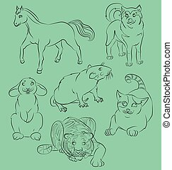 kot, szczur, królik, tiger, koń, i, pies
