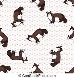 koteczek, snowshoe, koci, puszysty, tło., pattern., wszystko...