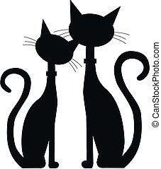 koty, czarnoskóry, dwa