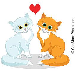 koty, miłość, szczęśliwy