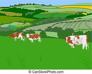 kráva, pastvisko