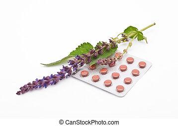 kräutermedizin