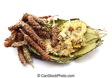 kräutermedizin, chinesischer bestandteil