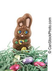 królik, czekolada, gniazdo