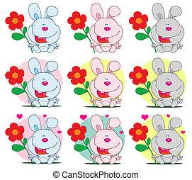 królik, dzierżawa kwiat