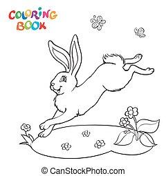 królik, koloryt książka, kwiat, butterfly.