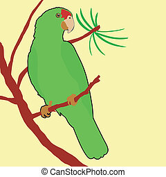 krönd, amason, röd, papegoja