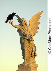 kraai, engel