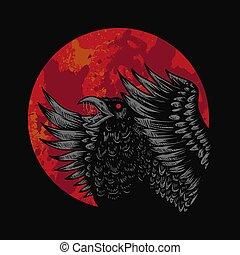 kraai, vector, rood, illustratie, maan