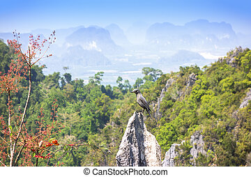 Krabi Town Hilll View Point. Krabi Province, Thailand