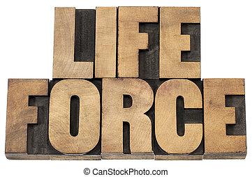 kracht, leven, hout, type
