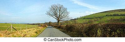 kraj, uk., panorama, walia, wąski, garth, droga