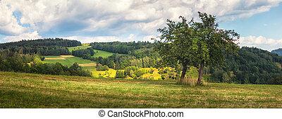 krajina, překrásný, kopyto, vyvýšenina, louka