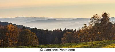 krajina, překrásný, les, vyvýšenina, louka