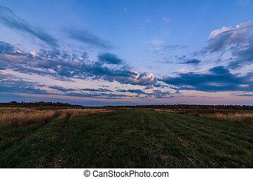 krajina, večer, obzor, les, podzim, bojiště