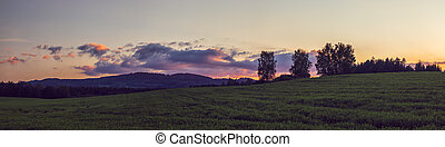 krajina, západ slunce, -, sázení, ozdobit iniciálkami, slunit se, panoráma, mračno