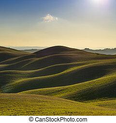 krajobraz., górki, farmland., tuscany, zachód słońca, ...