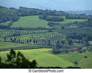 krajobraz, italiy, d?orcia., val, tuscany.