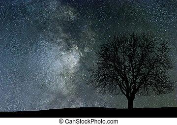 krajobraz., przestrzeń, noc, tło., drzewo., droga, mleczny
