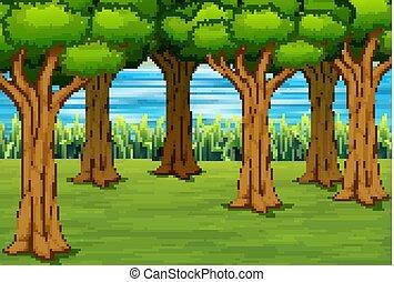 krajobraz, rzeka, tło, las