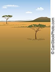 krajobraz, sawanna
