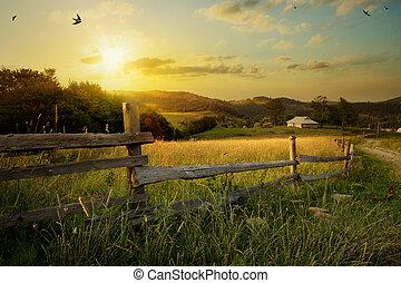 krajobraz., wiejski, sztuka, trawa pole