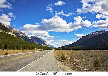krajobraz, wspaniały, road., północny