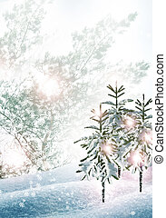 krajobraz., zima