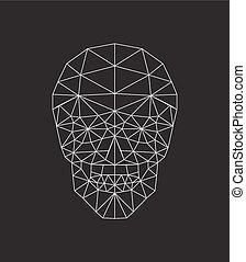 kranium, polygonal, vektor