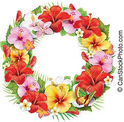 krans, i, tropical blomst
