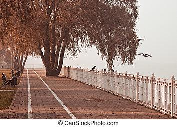 Early autumn morning in the Krasnodar, Russia