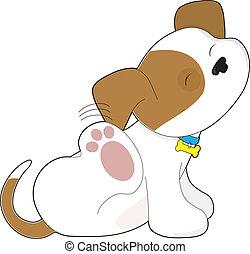 krassen, schattig, puppy