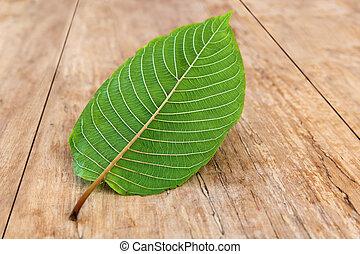Kratom leaf on wooden table. Mitragyna speciosa.
