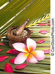 kraut, spa, und, wohlfühlen, begriff, auf, kokosnuss, blatt