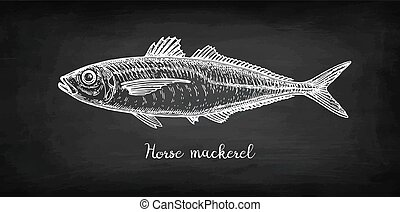 kreda, rys, mackerel., koń