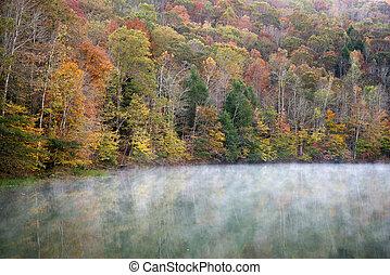 kreek, cranks, morgen, lake., herfst, nevelig