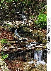 kreek, met, watervallen